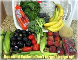 Bountiful Basket
